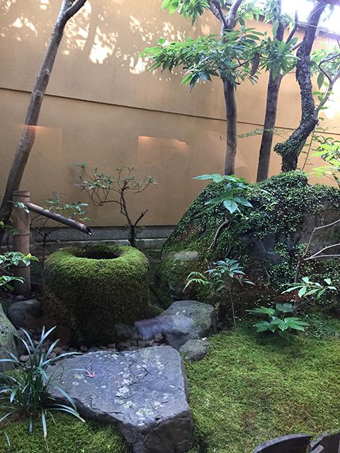 2017.11.27老松の庭