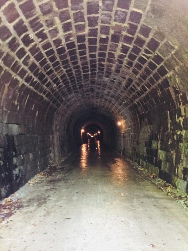 天城トンネルなか
