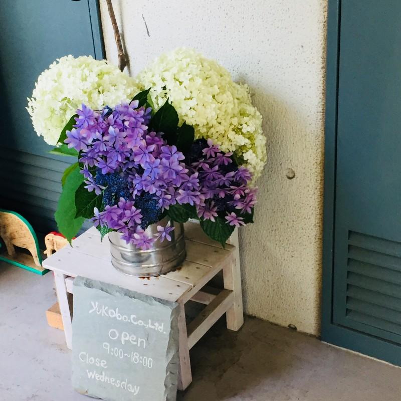 2018.8.19玄関花1