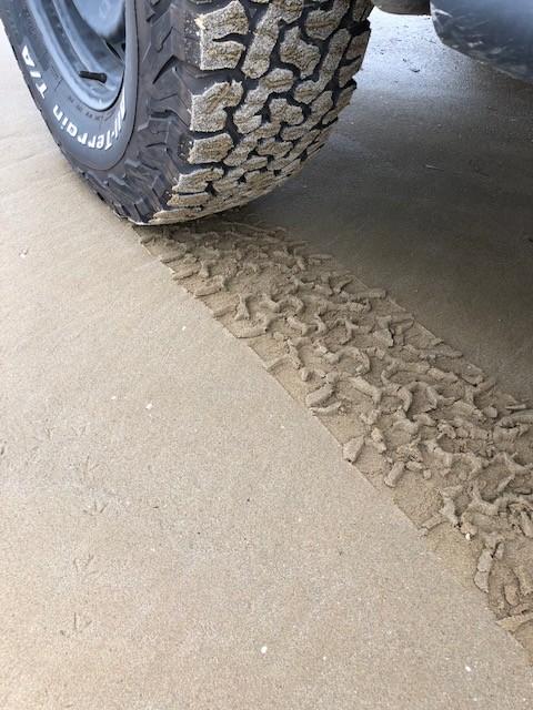 写真3 2018.10.23mkコンクリートのように硬くなった砂浜