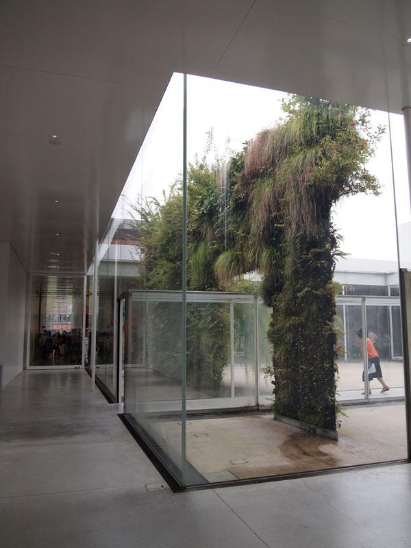 2016.10.30植物の壁